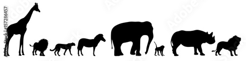 Photo  Vector silhouette of wild animal on white bakground.