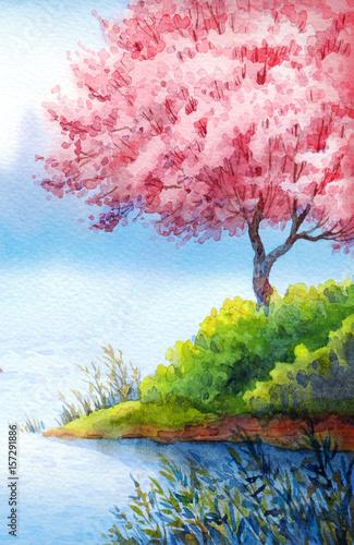 drzewo-kwitnace-wiosna