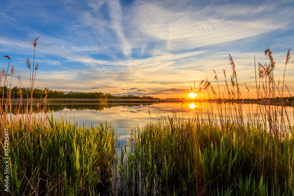 Fototapety, obrazy: Scenic view of beautiful sunset above the pond