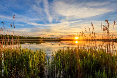 Obraz Scenic view of beautiful sunset above the pond - fototapety do salonu