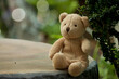 Teddy bear sitting on the table with Bokeh nature.