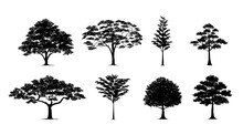 Silhouette Tree Set