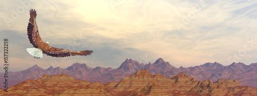 Fotografia Bald eagle flying upon rocky mountains - 3D render