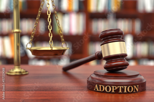 Adoption Law Wallpaper Mural