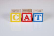 Cat Spelled In Blocks