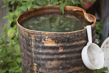 A Rusty Old Barrel With Water ...