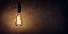 Vintage Hanging Light Bulb Ove...