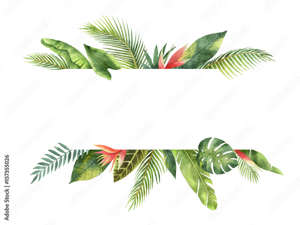 Fototapeta Watercolor banner tropical leaves and branches isolated on white background.