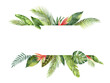 Leinwandbild Motiv Watercolor banner tropical leaves and branches isolated on white background.