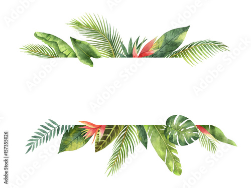 Foto  Watercolor banner tropical leaves and branches isolated on white background