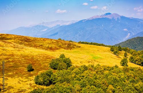 Spoed Fotobehang Meloen Carpathian Mountain Range in late summer