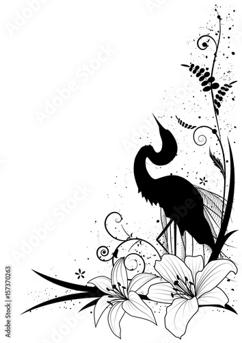 czapla i lilia
