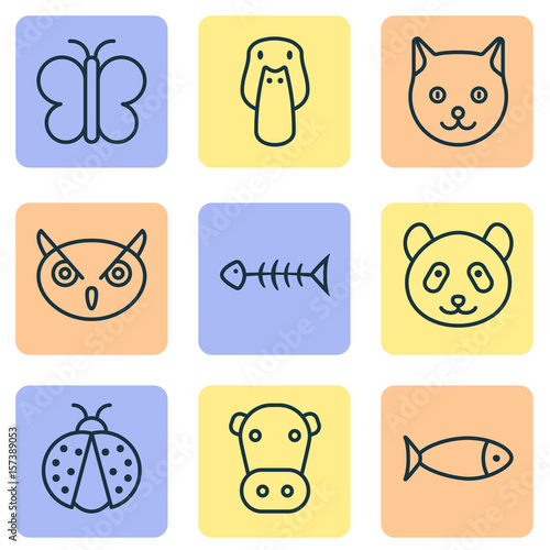 zoo-icons-set-collection-of-seafood