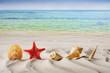 Summer, holidays, vacation