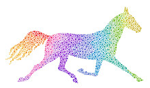 Running Rainbow Horse On A Whi...