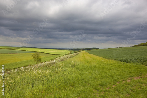 Foto op Canvas Pistache country landscape with storm clouds