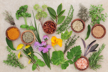 Fototapeta Fresh and dried herb selection on hemp paper background.