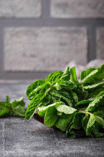 Fototapeta Bunch of fresh mint in a pot obraz na płótnie