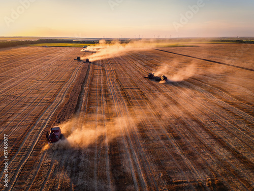 Stampe  Aerial view of Combine harvester agriculture machine harvesting golden ripe whea