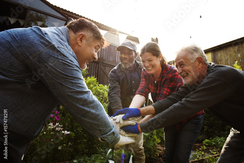 Fotomural  Group of people hand assemble planting vegetable in greenhouse