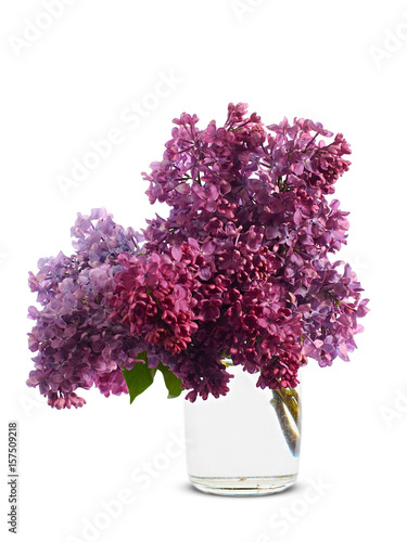 A Bouquet Of Lilac In A Vase With Water On A White Background Buy