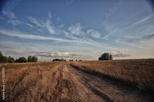 Poster Diepbruine autumn landscape nature field and sky