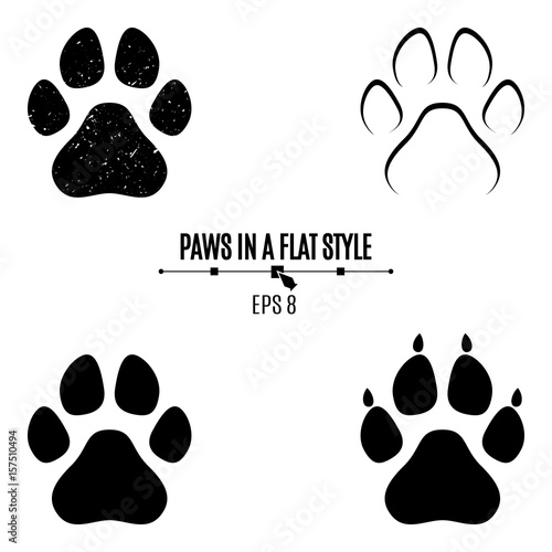 A set of dog's paws Fototapete