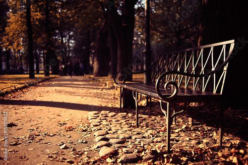 Fotobehang Zwavel geel City Trips concept bench in autumn park background