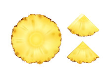 Vector Pineapple Slices
