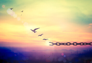 World environment day concept: Silhouette of bird flying and broken chains at autumn mountain sunset background