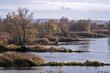 rzeka Odra