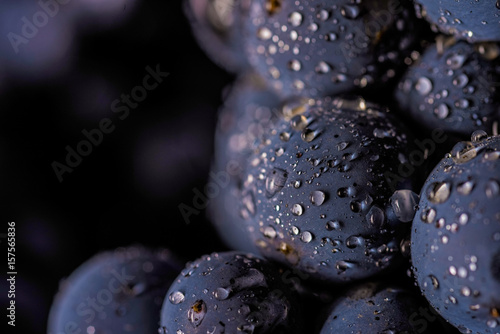 grape vines isolated , water drops ,macro shot , black background , ideal grapes bunch , closeup