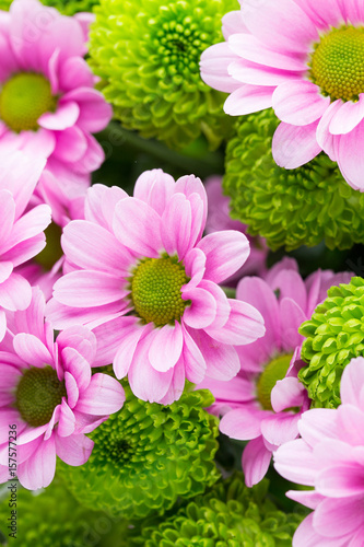 Easter Spring Flowers Background More Flowers Kaufen Sie Dieses