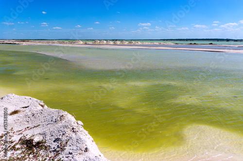 Green water landscape near the town of Rio Lagartos, Mexico Poster