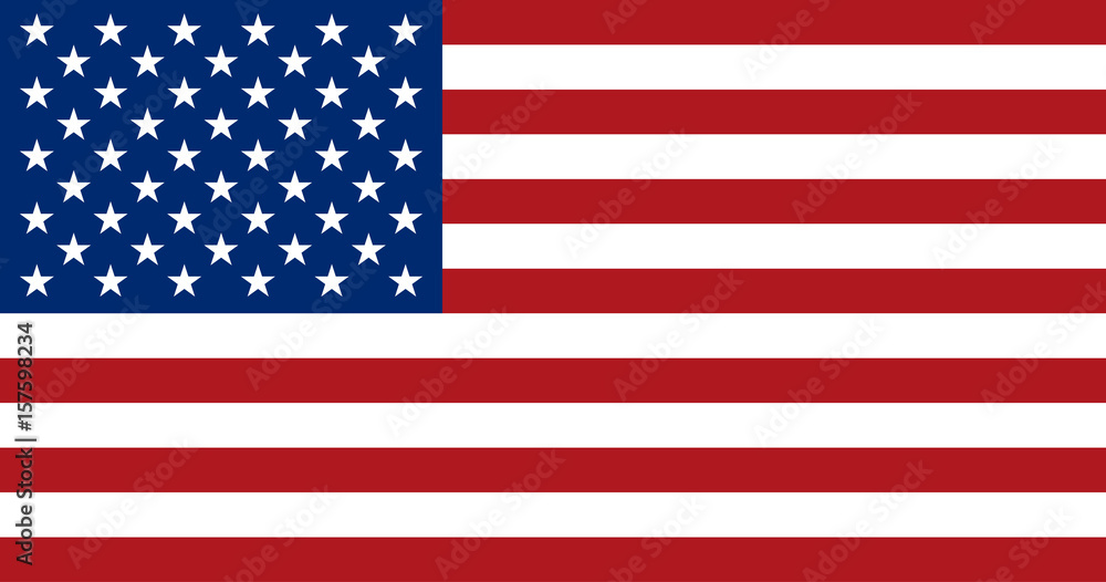 Fototapety, obrazy: American flag, flat layout, vector illustration