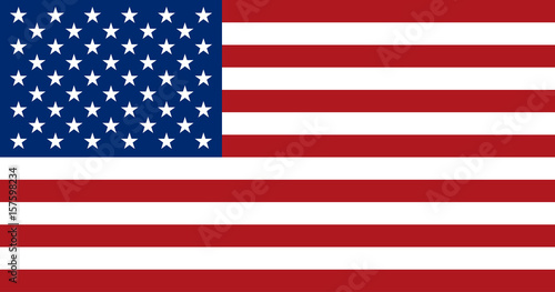 Obraz American flag, flat layout, vector illustration - fototapety do salonu