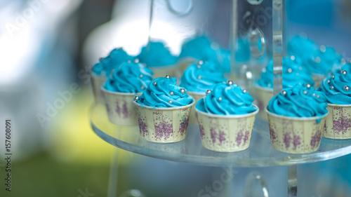 Delicious Blue Cupcakes