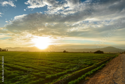 Photo valle valley agricultura
