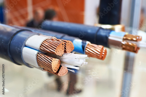 Large copper power cable in section