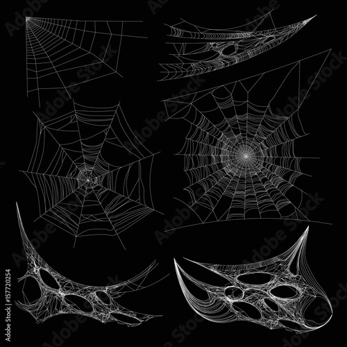 Canvastavla Spiderweb or spider web cobweb on wall corner vector isolated icons