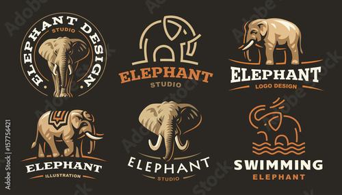 Photo  Set elephant logo - vector illustration, emblem design on dark background