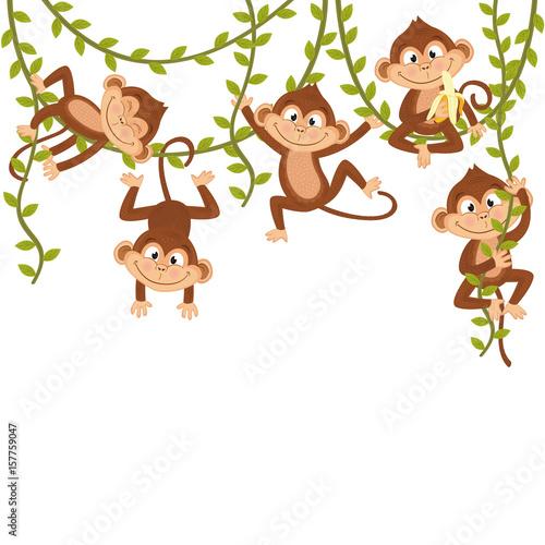Naklejka premium małpa na winorośli - ilustracja wektorowa eps