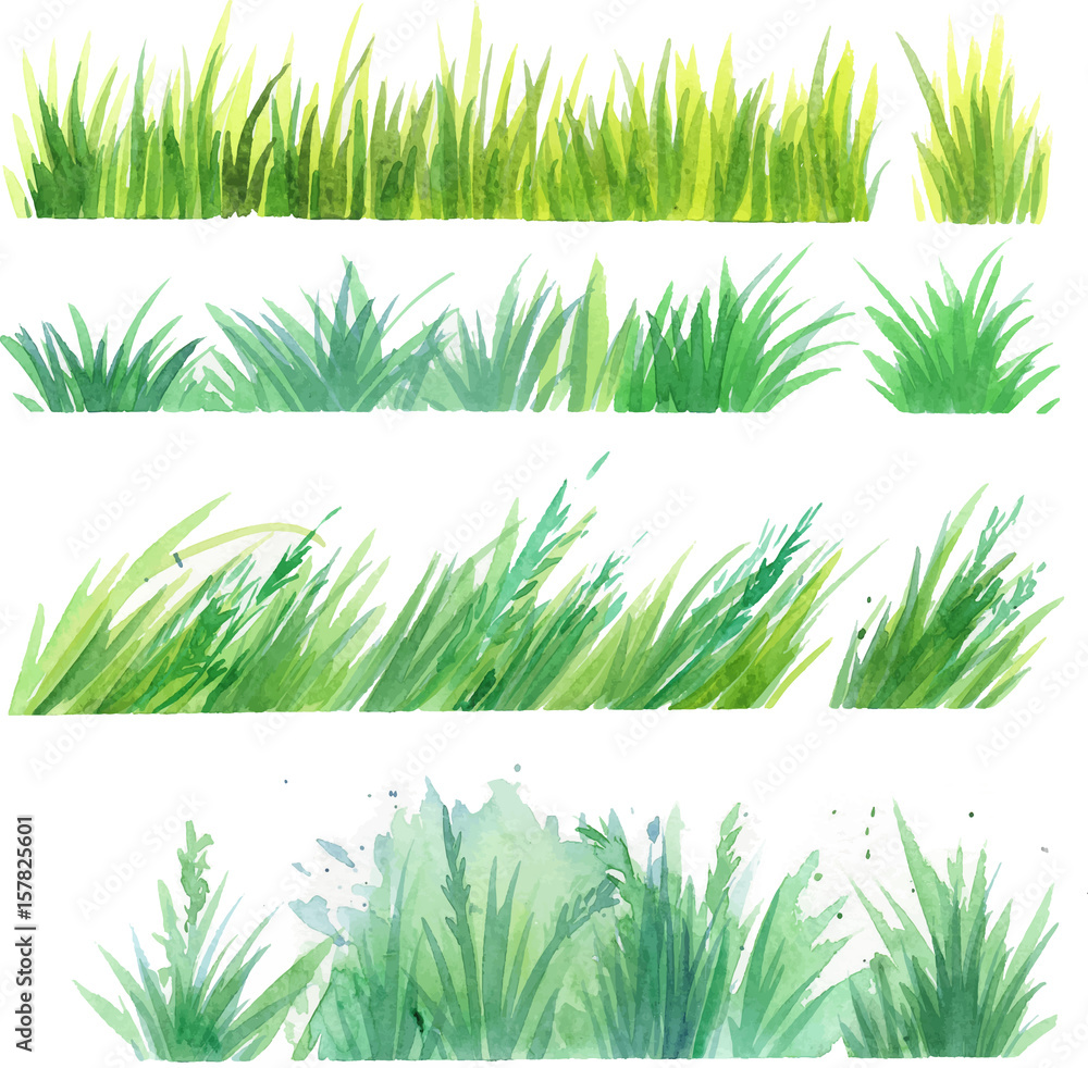 Fototapety, obrazy: Grass painted elements vector