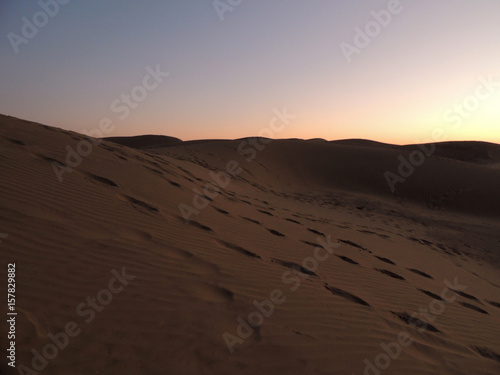 Poster de jardin Desert de sable spuren im wüstensand