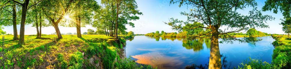 Fototapeta Sommerliche Landschaft mit Wiesen, Bäumen, Sonne und Fluss