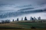Tatry i lasy we mgle, Zakopane, Polska - 157848897