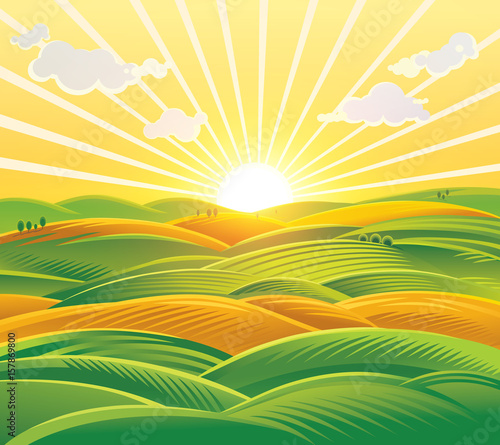 Countryside landscape, fields and hills at dawn. Raster illustration.