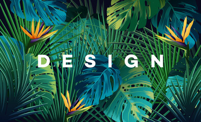 Fototapeta Bright tropical background with jungle plants. Exotic pattern with palm leaves.