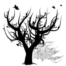 Tree Without Leaves Silhouette, Black On White Background With Birds