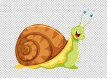 Green Snail On Transparent Background